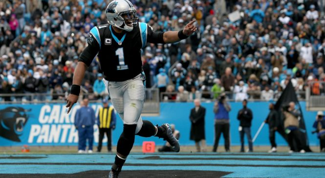 Carolina Panthers Highlights | Carolina Panthers Live™ Stream Online