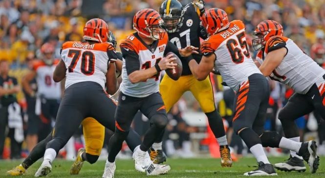 Bengals vs. Steelers : How To Stream Live Watch Online, Preview Date & Time, ESPN